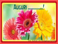Crea cartoline personalizzate di auguri | Auguri ...!