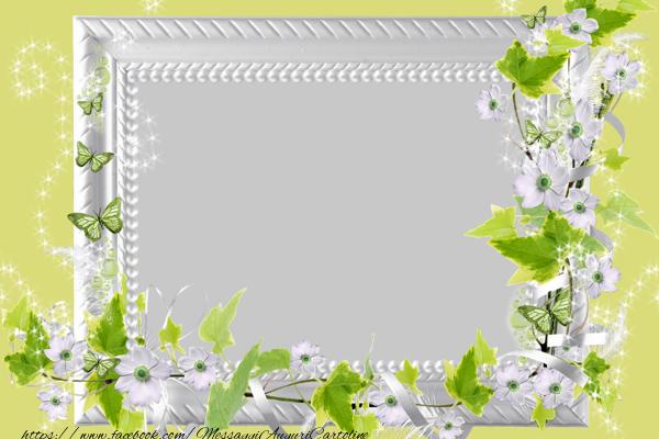 Crea cartoline personalizzate con foto   Cartoline con la tua foto gratis!